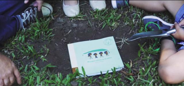 I libri ecologici, che diventano alberi