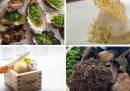 I 50 migliori ristoranti del mondo
