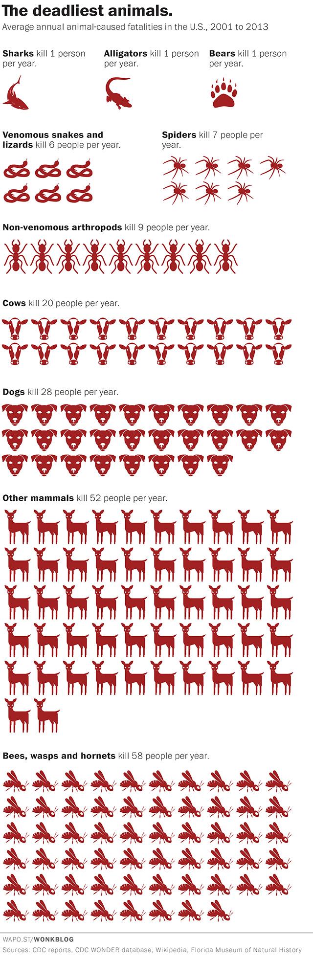 Classifica animali che uccidono più uomini