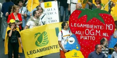 Siete sicuri di sapere cosa sono gli OGM?