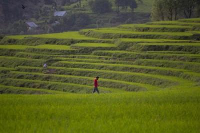 Neelnag, Kashmir, India
