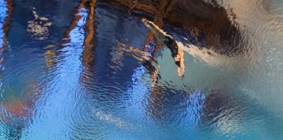 Le prime foto dei Mondiali di nuoto