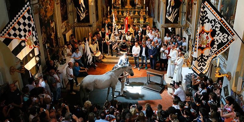 La tutela del palio di Siena e dei suoi cavalli
