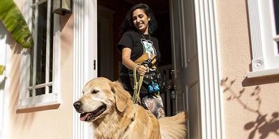 L'app per portare a spasso i cani