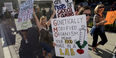 Perché siamo contrari agli OGM