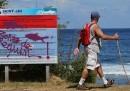 La Réunion, i surfisti e gli squali