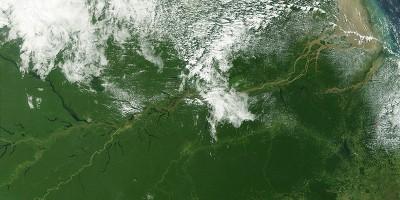 La Norvegia ha pagato il Brasile per salvare l'Amazzonia