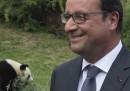 Il presidente e il panda