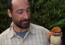 Le prime foto del martin pescatore con i baffi