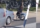 L'uccisione di un uomo nero sulla sedia a rotelle nel Delaware