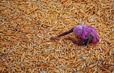 Aloli, India