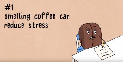 6 ragioni per bere caffè ogni giorno