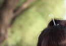 L'ultima moda in Cina, nel suo piccolo