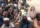 La liberazione di 338 prigionieri di Boko Haram