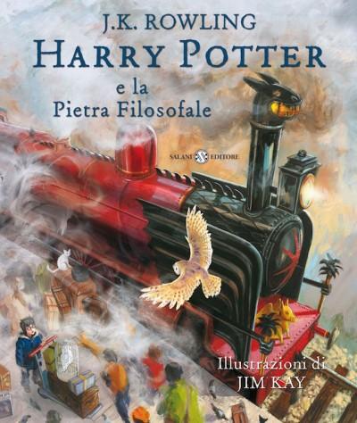 Risultati immagini per harry potter libro illustrato