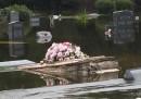 Le bare che galleggiano sull'acqua in South Carolina