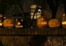 Halloween, la vigilia delle zucche