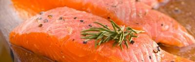 Il primo salmone OGM negli Stati Uniti