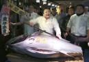 A Tokyo un tonno è stato venduto per 600mila euro