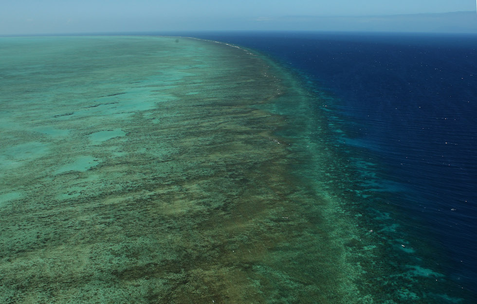 """Great Barrier Reef Threatened With Extinction """"Within 20 Years"""""""