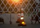 A Fukushima hanno un problema con i cinghiali radioattivi