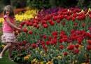 L'equinozio di primavera, che cos'è e perché è stato oggi