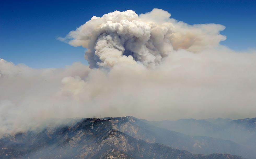 incendio foresta