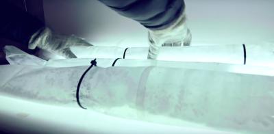 In un archivio canadese che custodisce ghiaccio antichissimo è successa la cosa che non doveva succedere