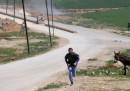 Cosa mostrano le foto delle persone uccise e ferite nel bombardamento chimico in Siria