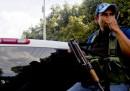 In Messico c'è un esercito che difende gli avocado