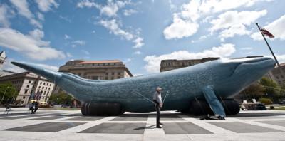 """Cosa sappiamo del """"Blue Whale"""", senza allarmismi inutili"""