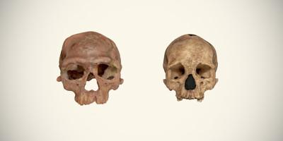Questi fossili potrebbero riscrivere la storia della specie umana