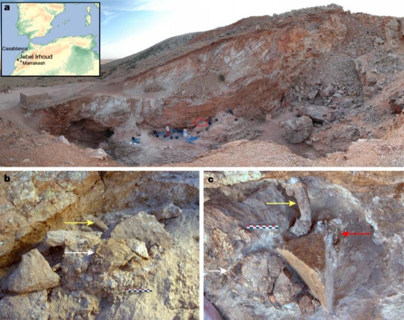 fossili-marocco