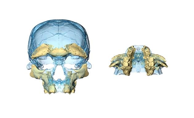 fossili-marocco3