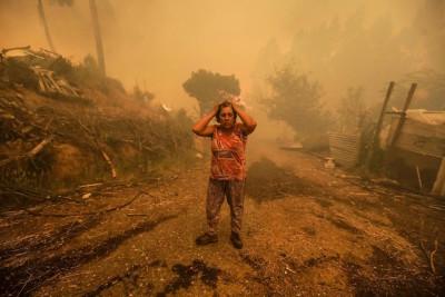 incendi portogallo