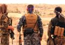 Due cose nuove successe in Siria, spiegate