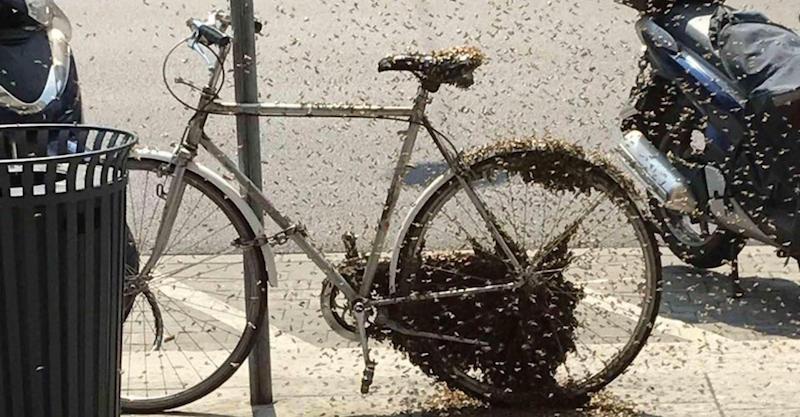 Ancora Sulla Bicicletta A Ruote Quadrate Maurizio Codogno