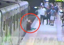 Il video della donna trascinata dalla metropolitana a Roma