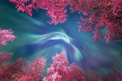 Aurore boreali, lune giganti e nebulose