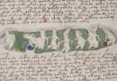 L'ultima sul misterioso manoscritto Voynich