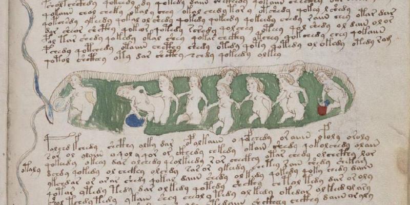 manoscritto-voynich_000153
