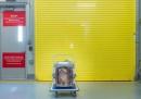 L'aeroporto di New York ha un terminal per gli animali