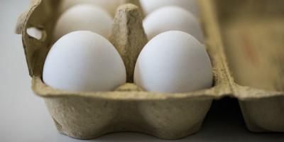 Le uova contaminate sono arrivate in Italia?