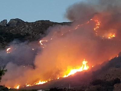 Incendi: fiamme a Ischia, da Forio al monte Epomeo