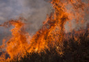 A Los Angeles più di 700 case sono state evacuate per un grosso incendio