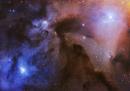 Vincitrice assoluta + Categoria Stelle & Nebulose