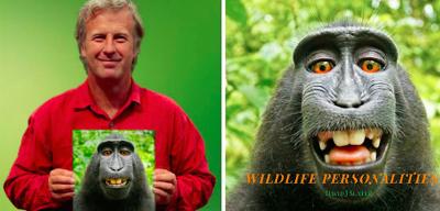 È finita la battaglia legale sul selfie del macaco
