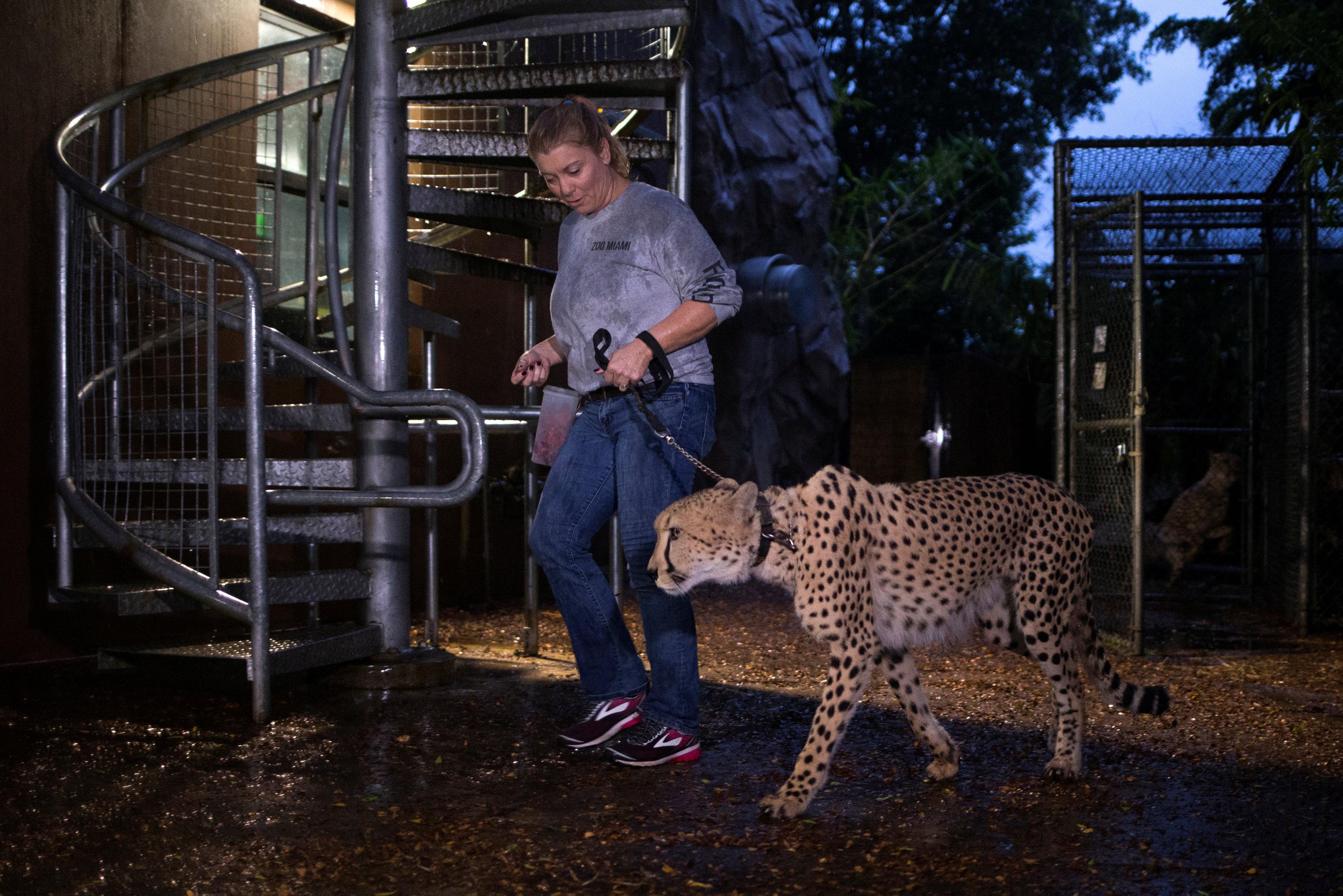 zoo-miami-41.jpg