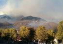 Negli ultimi giorni ci sono stati almeno venti incendi in Piemonte