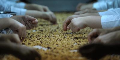 Questo articolo parla di Abkhazia e Nutella